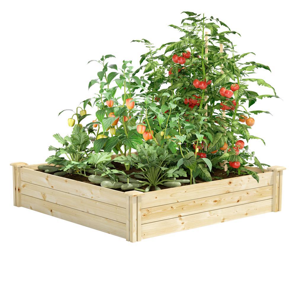 4 ft. x 4 ft. x 10.5 in. Original Pine Raised Garden Bed