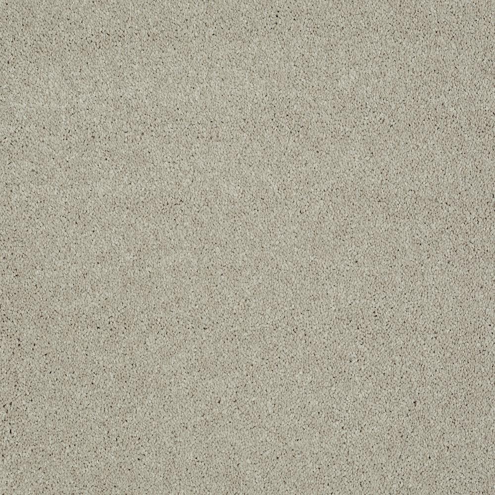 Carpet Sample - Whistler - Color Vista Texture 8 in. x 8 in.