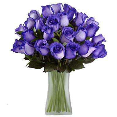 Gorgeous Deep Purple Rose Bouquet in Clear Vase (24 Stem) Overnight Shipping Included