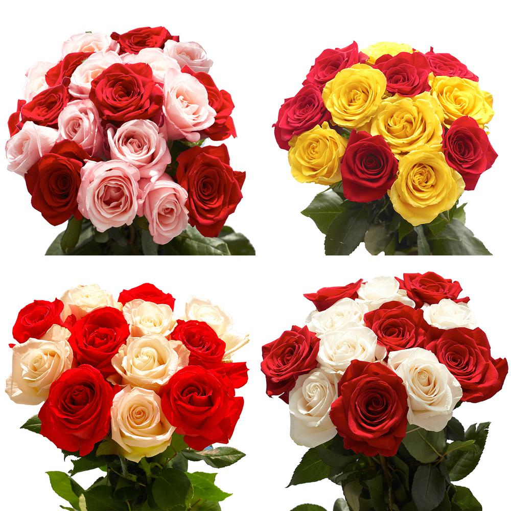 Globalrose 50 Stems Of Roses 25 Red And 25 One Color 50 Halfhalf
