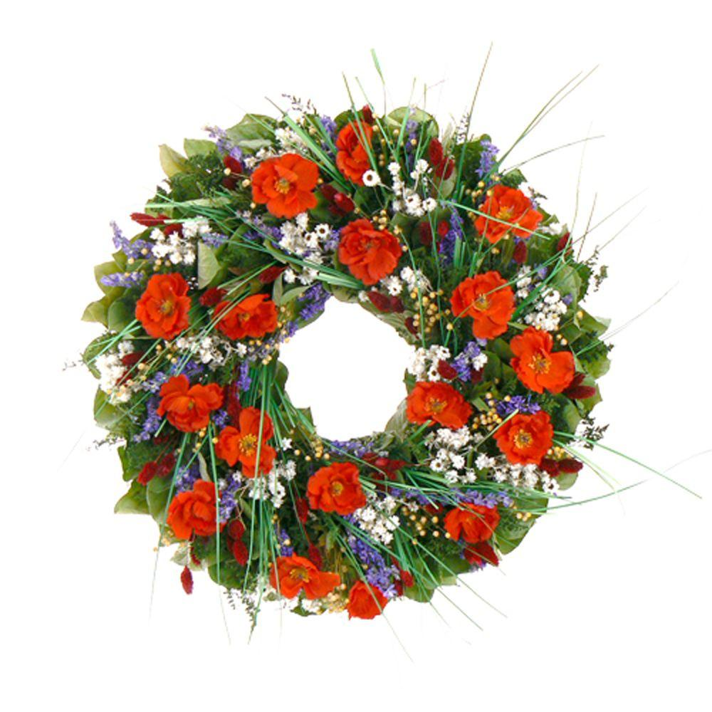 The Christmas Tree Company Brilliant Poppies 22 in. Dried Floral Wreath-DISCONTINUED