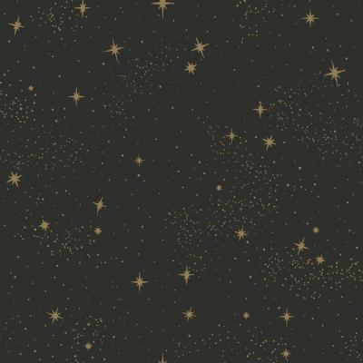 28.18 sq. ft. Upon A Star Peel and Stick Wallpaper