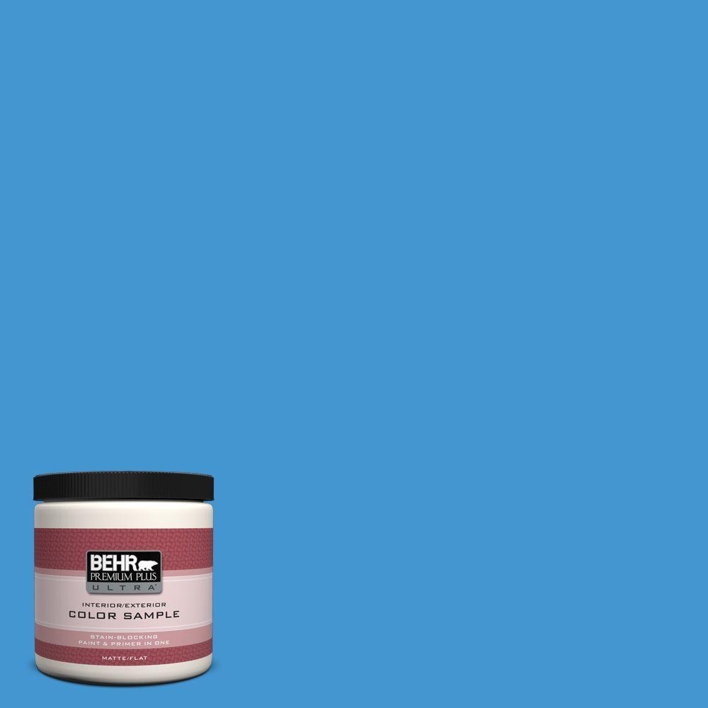 8 oz. #P510-5 Perfect Sky Interior/Exterior Paint Sample