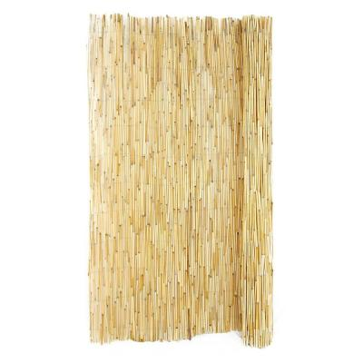 6 ft. H x 16 ft. L Reed Fencing (4-Pack)