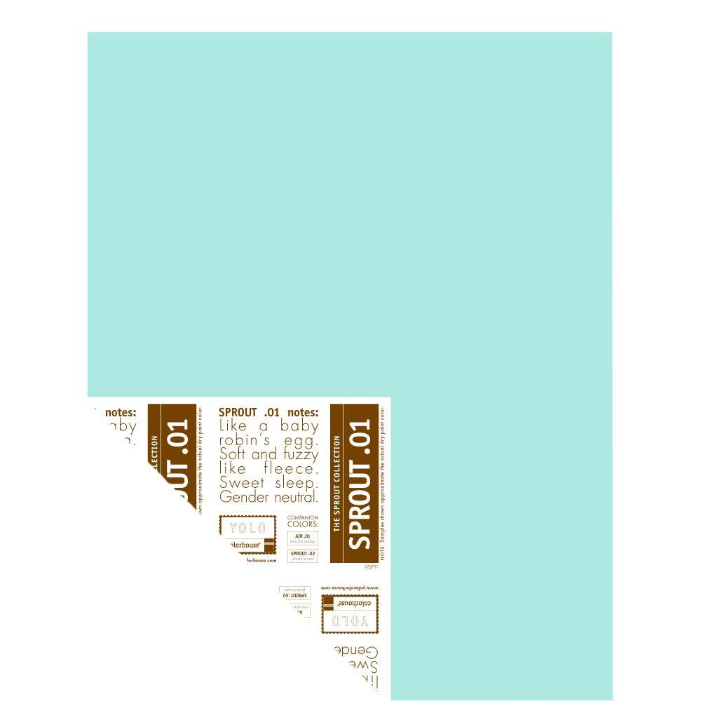 YOLO Colorhouse 12 in. x 16 in. Sprout .01 Pre-Painted Big Chip Sample