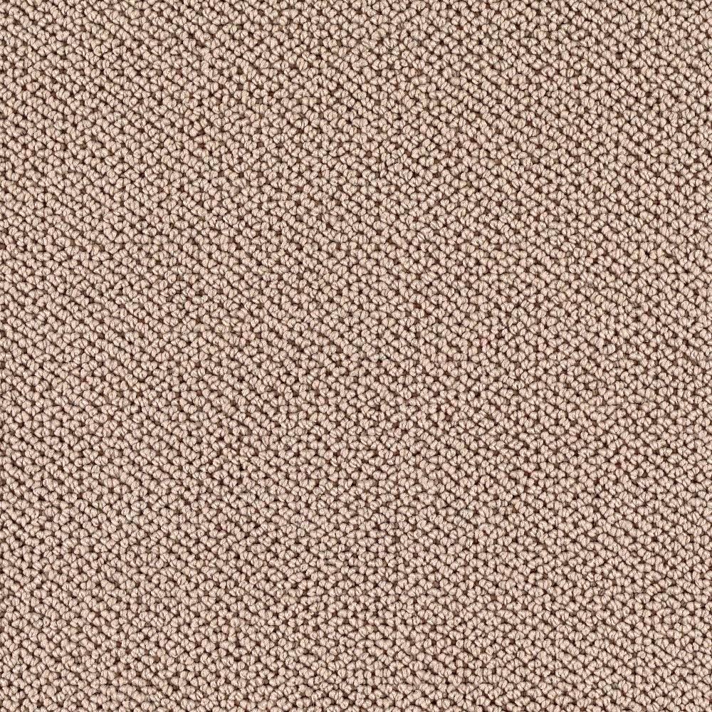 TrafficMASTER Deliverable - Color Dakota 12 ft. Carpet