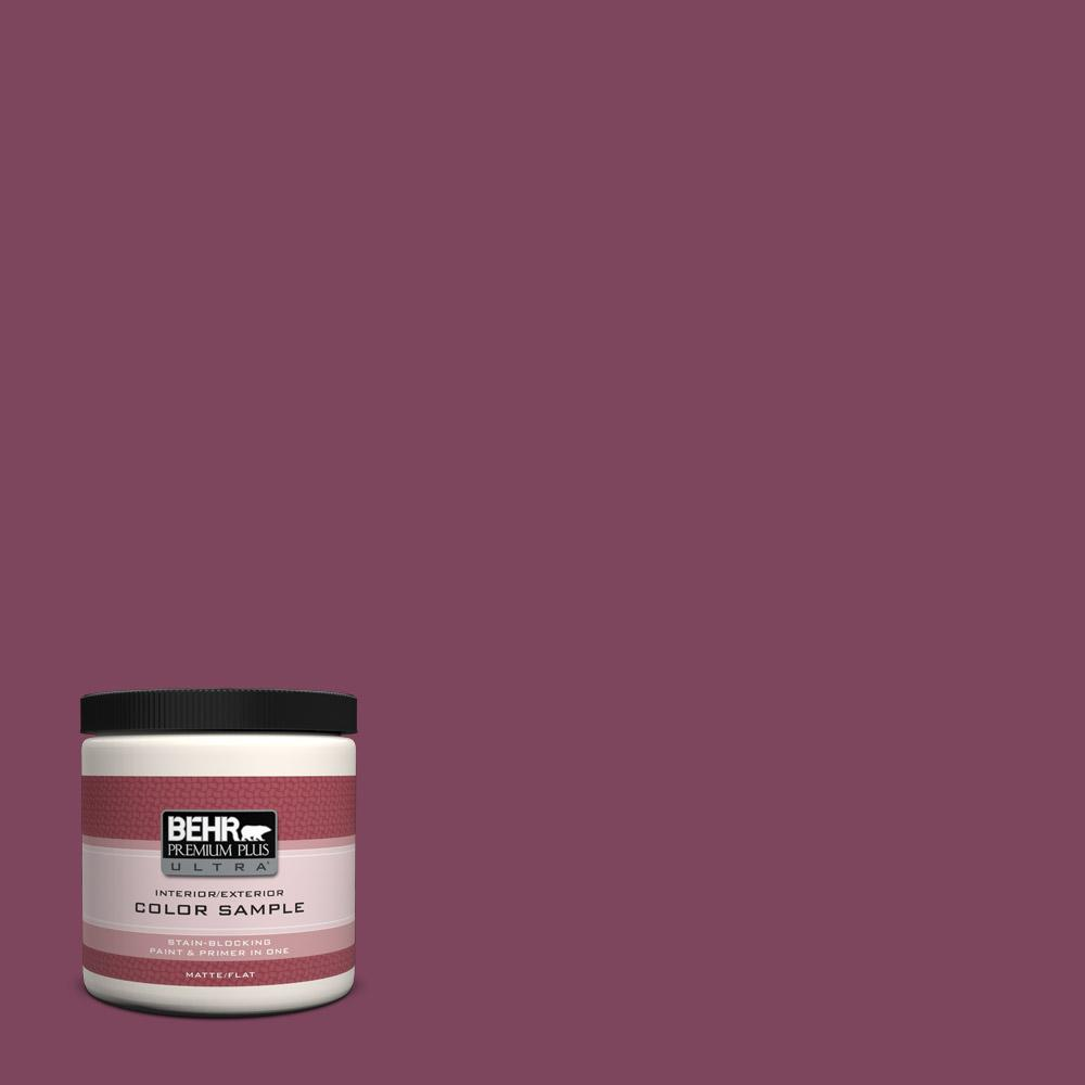 Behr Midnight Show Paint Color
