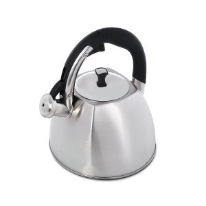 Belgrove 10-Cup Brushed Stainless Steel Tea Kettle by