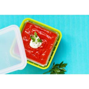 2-Cup Glass Food Storage Container with Lid (2-Pack) by