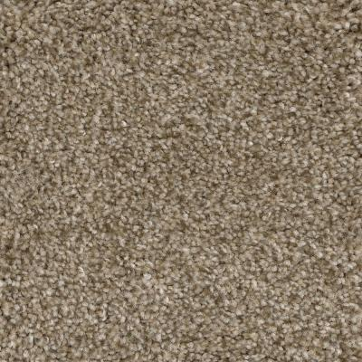 2 00 2 99 Beige Indoor Carpet Carpet The Home Depot