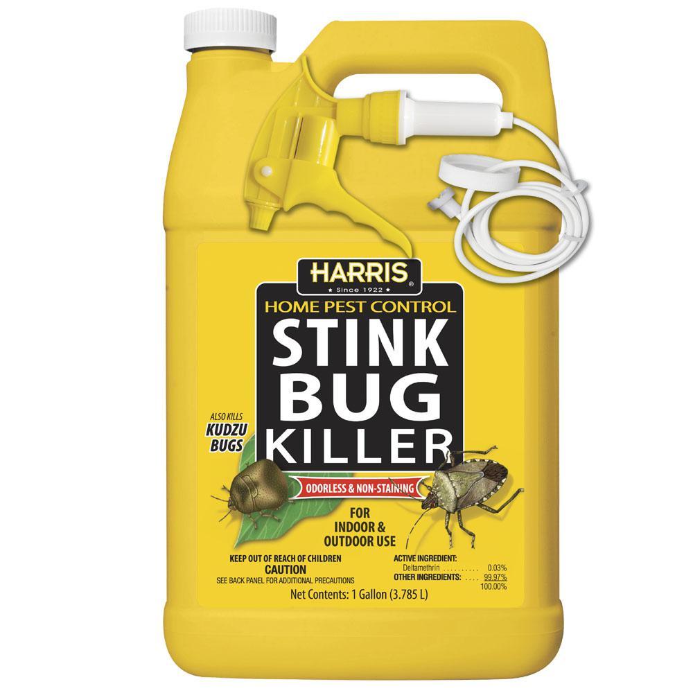 1 Gal. Stink Bug Killer