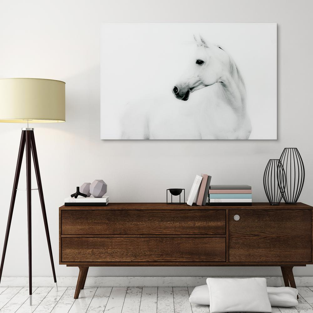 "48 in. x 32 in. ""Blanco Stallion Horse"" Frameless Free Floating Tempered Glass Panel Graphic Art Wall Art"