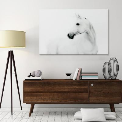 """48 in. x 32 in. """"Blanco Stallion Horse"""" Frameless Free Floating Tempered Glass Panel Graphic Art Wall Art"""