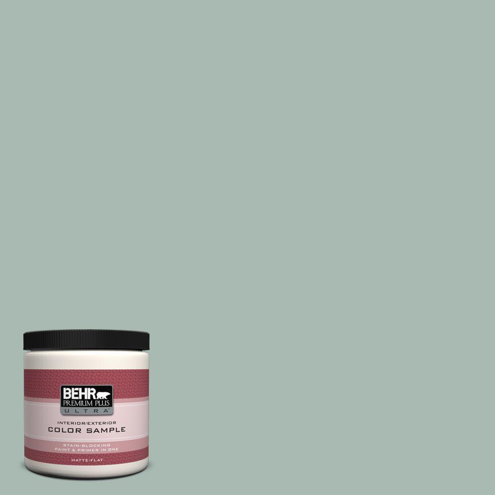 8 oz. #BXC-85 Quiet Teal Interior/Exterior Paint Sample