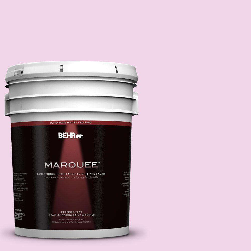 BEHR MARQUEE 5-gal. #680A-1 Candy Tuft Flat Exterior Paint