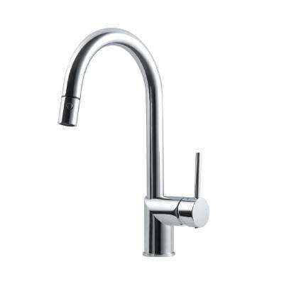 Vitale Single-Handle Pull Down Sprayer Kitchen Faucet with CeraDox Technology in Polished Chrome