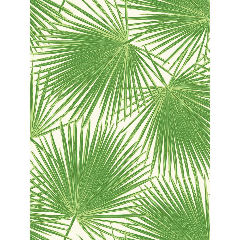 Seabrook Designs Aruba Green and White Palm Leaf Wallpaper TA20204