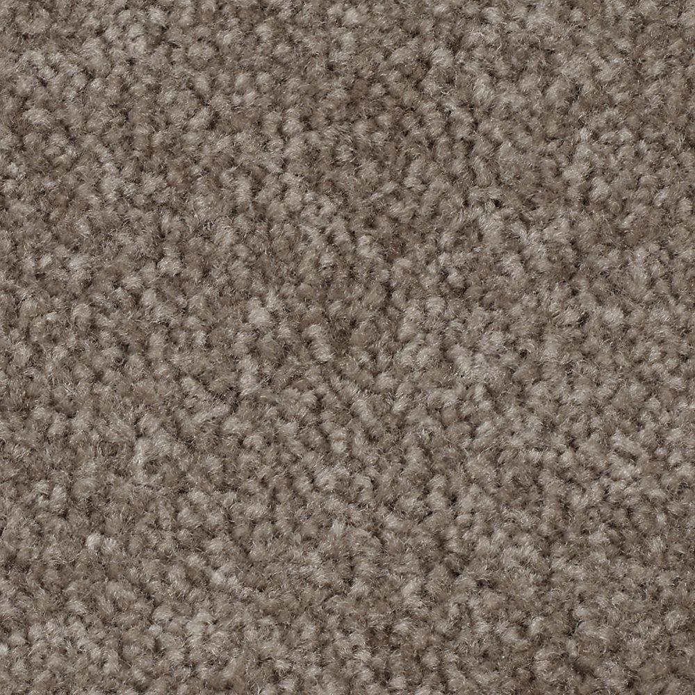 Carpet Sample - Jennings - Color Java Textured 8 in. x 8 in.