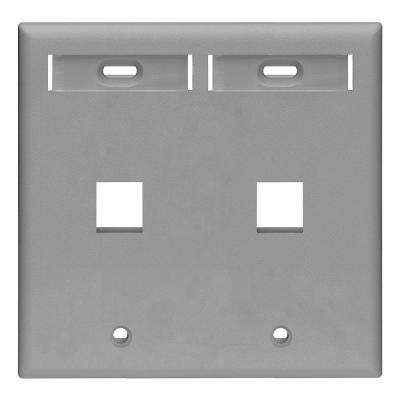 2-Gang Quickport Standard Size 2-Port Wallplate with ID Windows, Gray