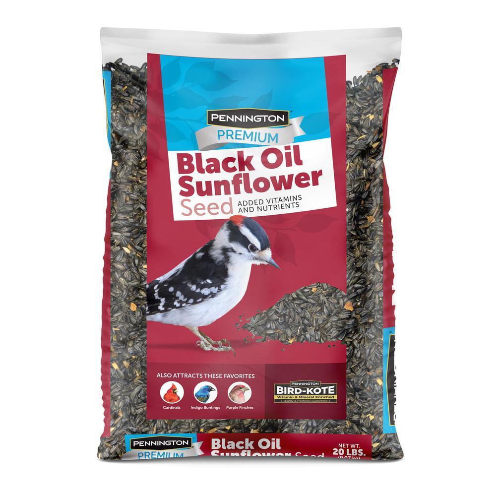 20 lbs. Premium Black Oil Sunflower Bird Seed