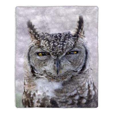 Multi-Color Owl Print Sherpa Fleece Blanket