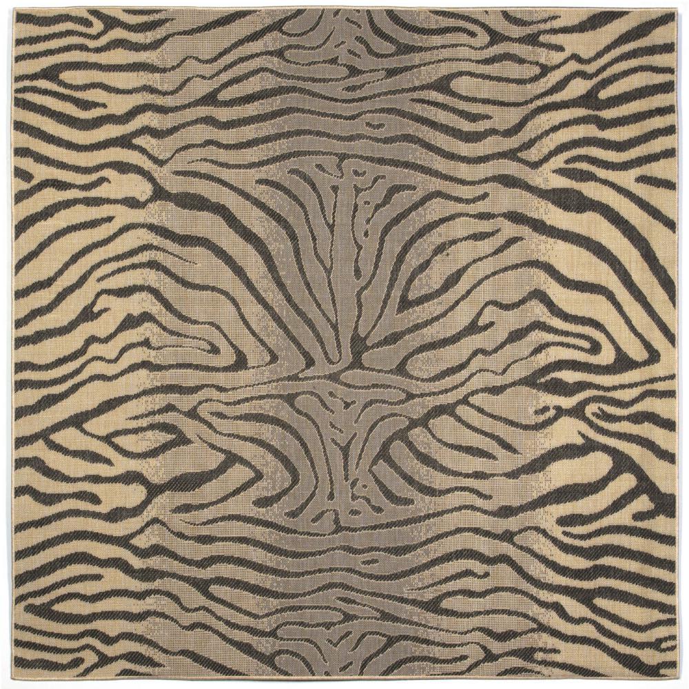 Zebra Pattern Horse Rug: Baxter Wild Horse Charcoal 8 Ft. X 8 Ft. Indoor/Outdoor