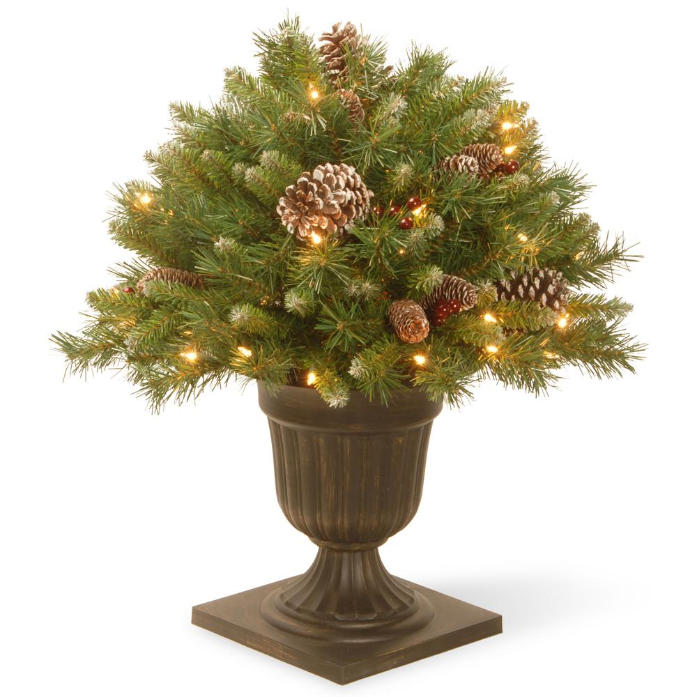 national tree company 2 ft frosted berry porch artificial bush with clear lights - Porch Christmas Tree