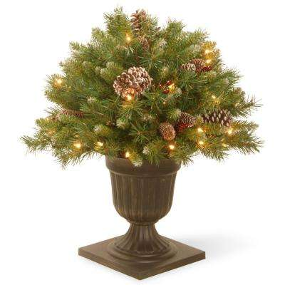2 ft. Frosted Berry Porch Artificial Bush with Clear Lights
