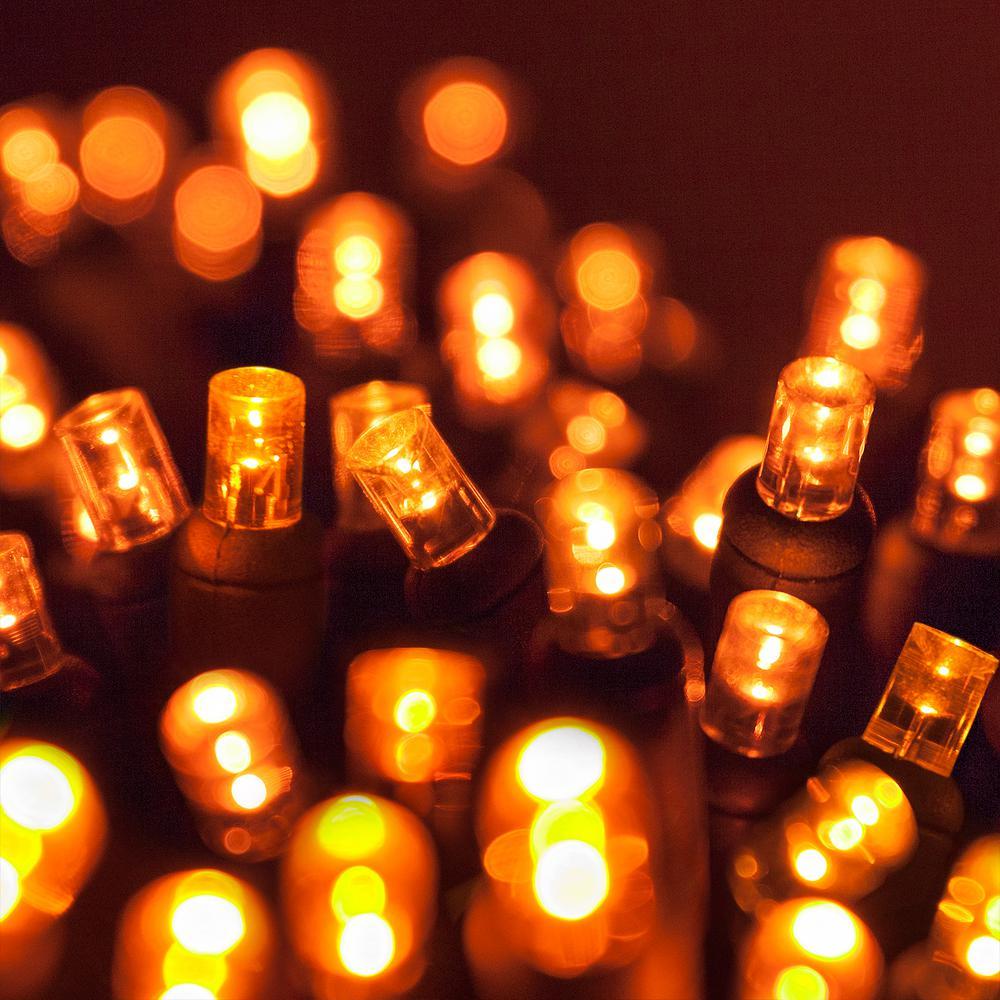 Wintergreen Lighting 24 Ft 70 Light Orange 5 Mm Led Mini