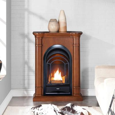 28 in. Ventless Dual Fuel Fireplace in Apple Spice with Thermostat Control