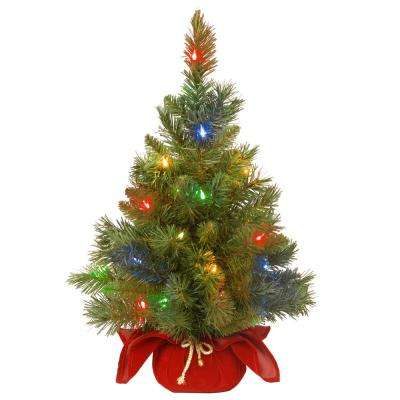24 in. Majestic Fir Tree with Battery Operated Multicolor LED Lights