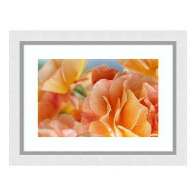 """Rose detail of yellow flowers in a bouquet, North America and Europe"" by Jan Vermeer Framed Wall Art"
