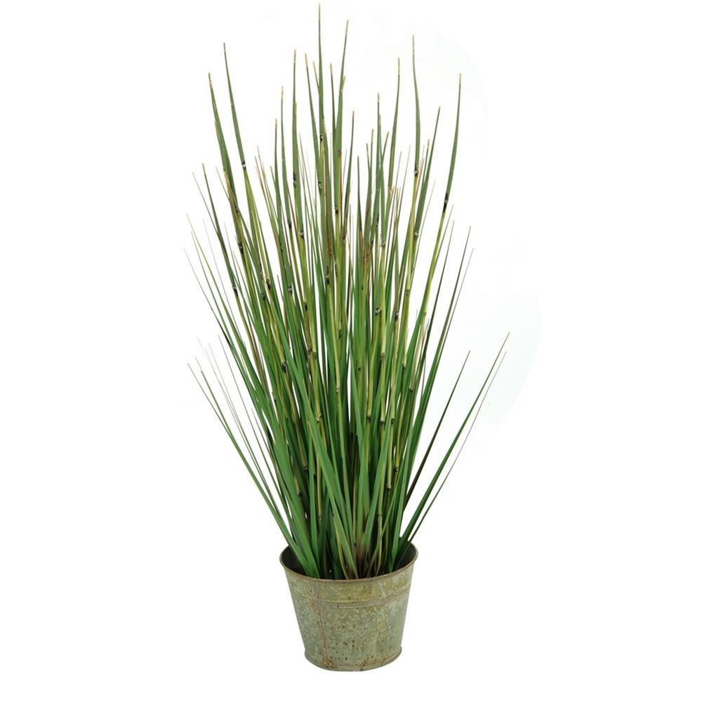 Indoor 31 in. Onion Grass in Round Metal Planter