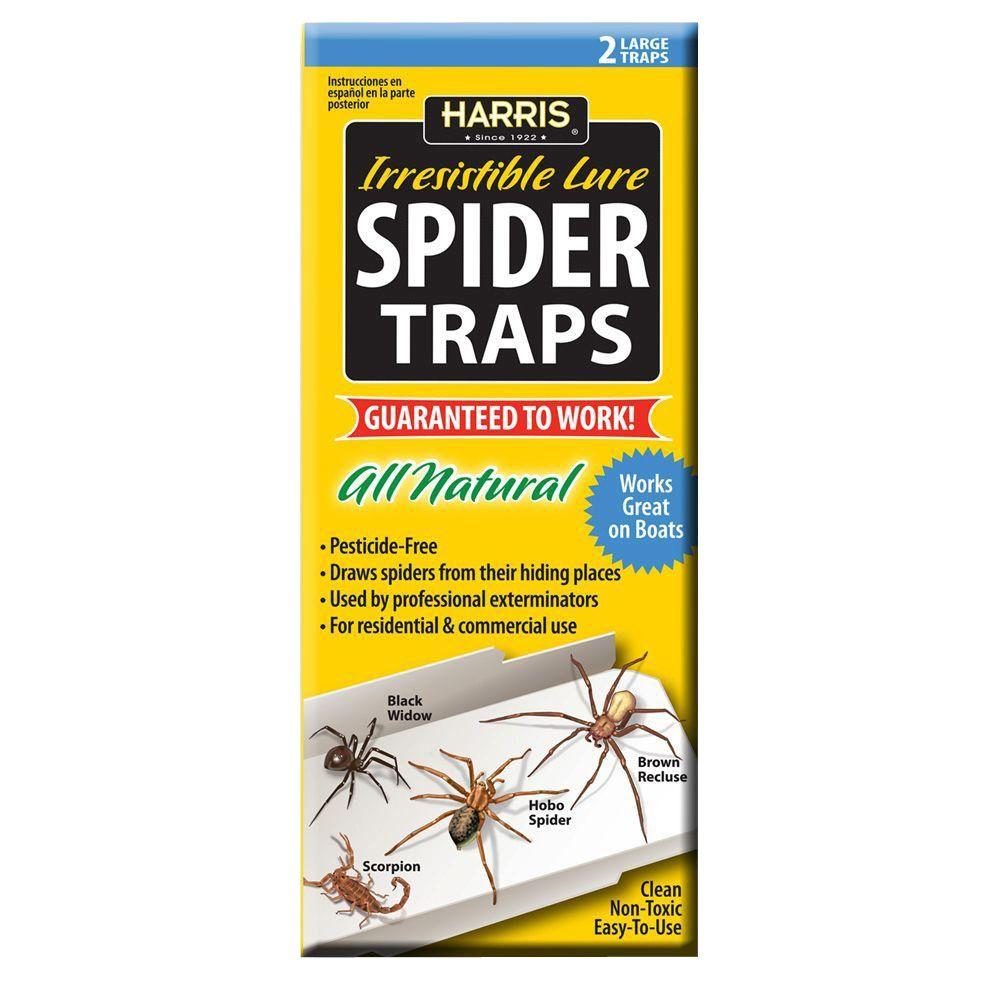 Spider Traps with 25 Irresistible Lures (2-Pack)