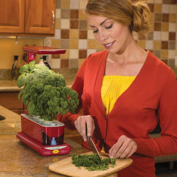 healthy-recipes-with-home-grown-herbs-vegetables-fruits