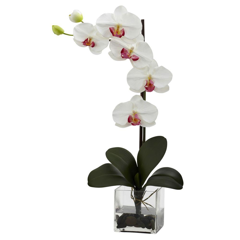nearly natural giant phalaenopsis orchid with vase arrangement in rh homedepot com orchid vase ideas orchid flower with vase