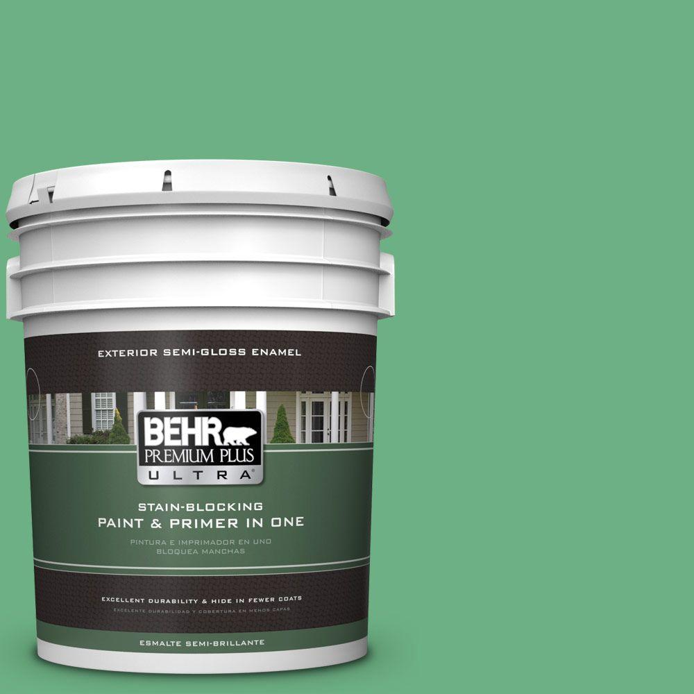 BEHR Premium Plus Ultra 5-gal. #P410-5 Lily Pads Semi-Gloss Enamel Exterior Paint