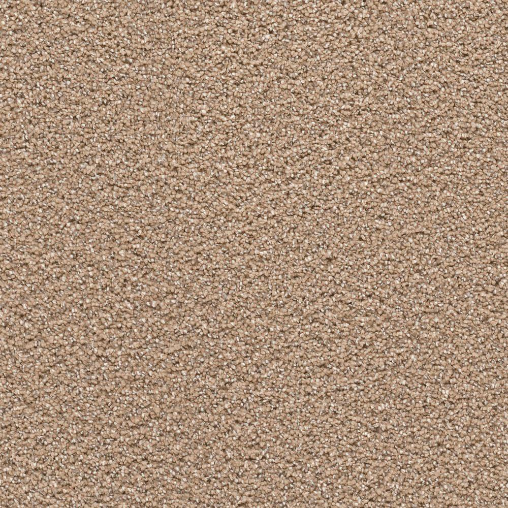 Trafficmaster Thoroughbred Ll Color Morgan Texture 12 Ft Carpet Karpet 250x350 Bcf Super Quality Elite I Hancock