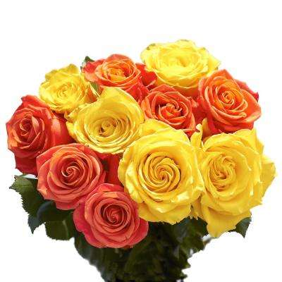 50 Stems of Roses 25 Yellow and 25 Orange