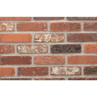 Alberta Cut Kiln Fired Thin Brick Tumbled Smooth Tile Edging Strips Case (50-Case, 6.84 ft. /Case)