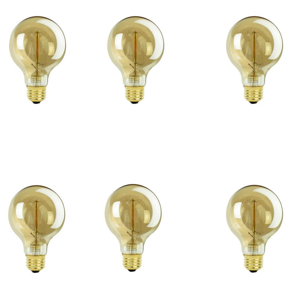 60-Watt Incandescent T45 Thomas Edison Vintage Filament Globe Light Bulb (6-Pack)