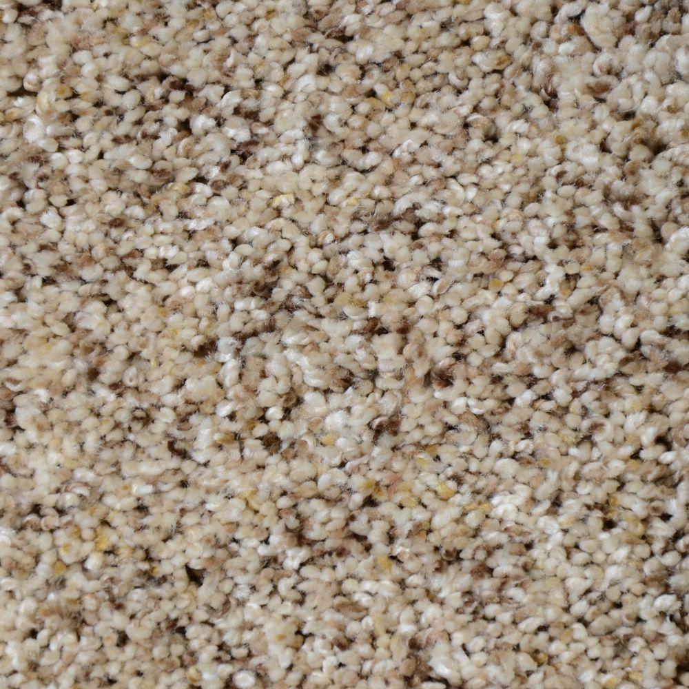 Nevada - Color Alta Sierra Texture 12 ft. Carpet