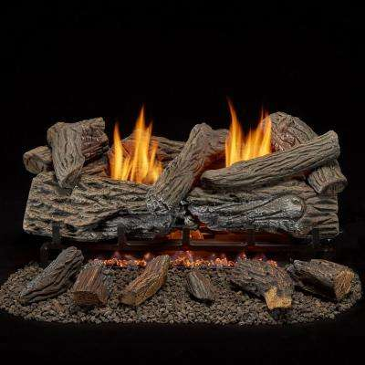 24 in. Vent Free Propane Gas Log Set with Remote