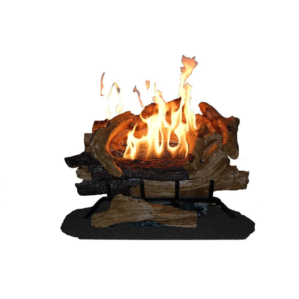 Emberglow - American Elm 24 in. Vent-Free Fully Automatic Gas Log Set in Natural Gas - Complete with 8 hand-painted refractory cement logs and a tiered grate with dual burners. 5-step flame height adjustment digital remote control.