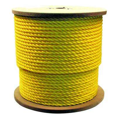 1/2 in. x 250 ft. Hollow Braided Poly Rope Yellow