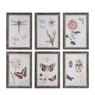 13 in. H x 9.5 in. W Herbarium Prints Framed Wall Art (Set of 6)