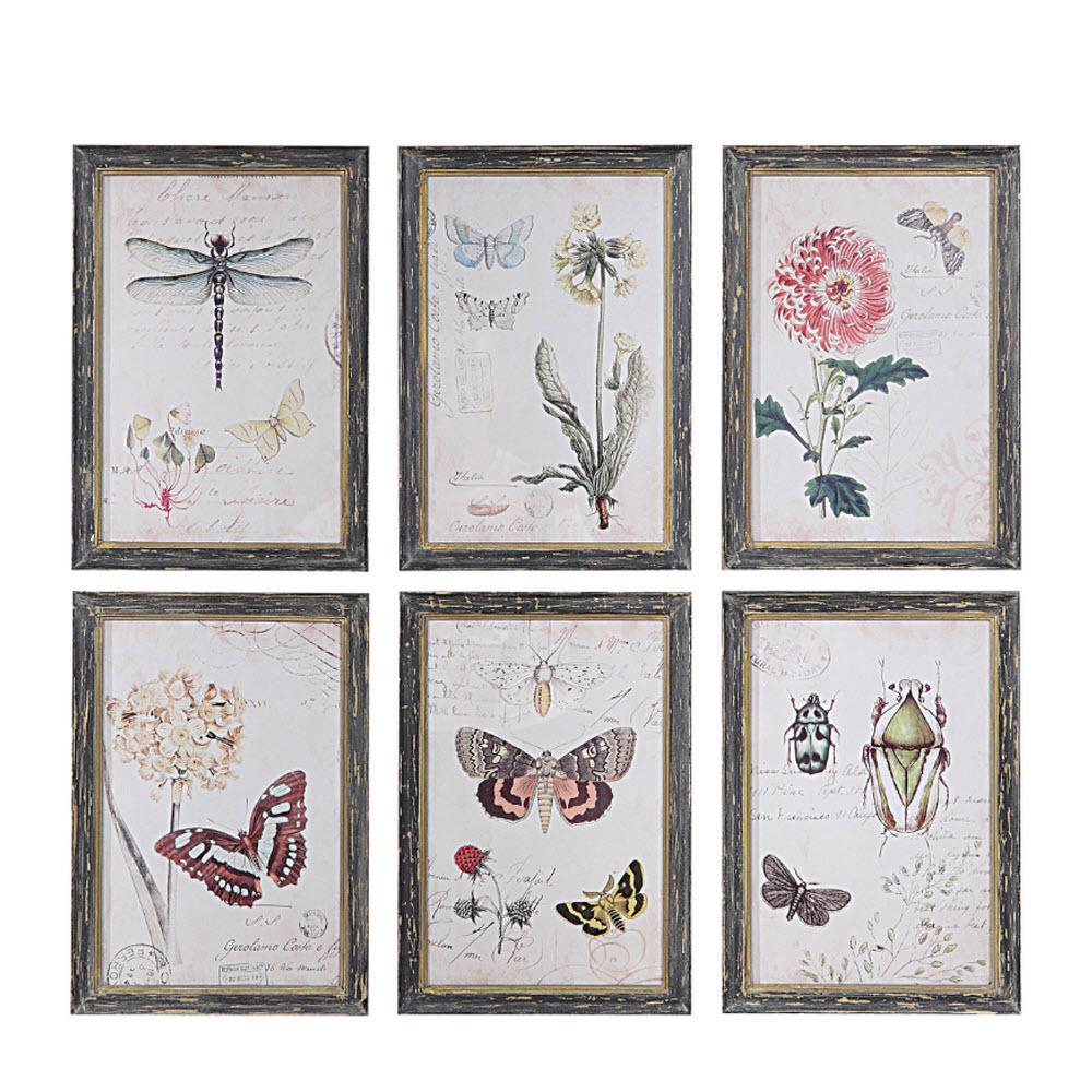3R Studios 13 in. H x 9.5 in. W Herbarium Prints Framed Wall Art (Set of 6), Multicolor was $151.8 now $91.3 (40.0% off)