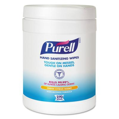 6 in. x 6-3/4 in. White Sanitizing Hand Wipes (270/Canister, 6 Canisters/Carton)