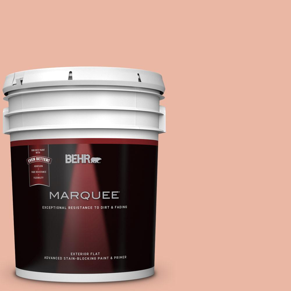 BEHR MARQUEE 5-gal. #M190-3 Pink Abalone Flat Exterior Paint