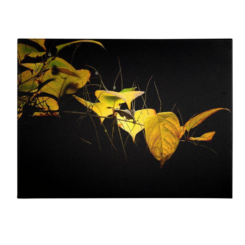 16 in. x 24 in. Golding Canvas Art